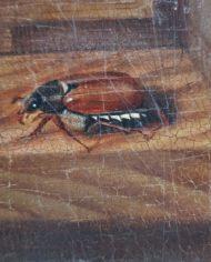 old-paintings-online-natura-morta-settecento-olio-su-tavola (4)