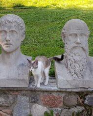 old-paintings-online-busti-in-pietra-scultori-pittori (3)
